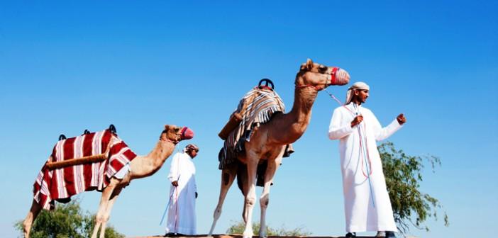 Zwei Kamele bei der Wüstensafari im Hotel Banyan Tree Al Wadi in Ras al Khaimah © Banyan Tree Hotel